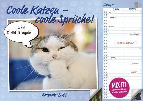 Duo Kalender Coole Katzen - coole Sprüche bei Weltbild
